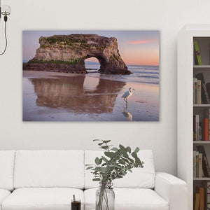 White Bird - Acrylic Print - Santa Cruz Art Prints