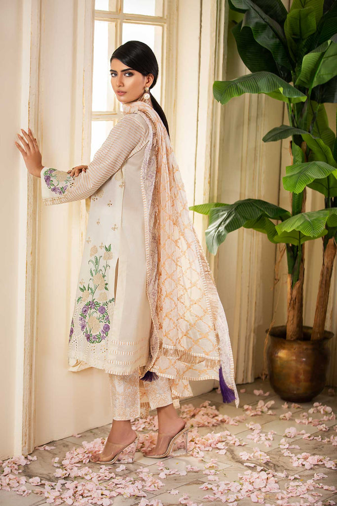 Eid Collection - Asto Khodos