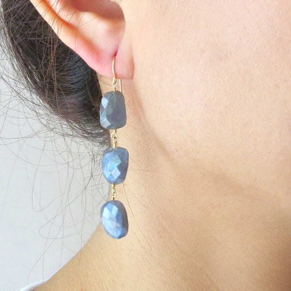 Labradorite Dangle Earrings