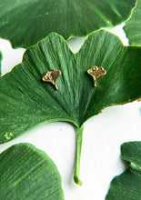 Load image into Gallery viewer, Ginkgo Stud Earrings