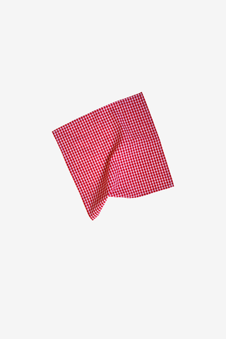 Small Red Picnic Check Napkins - Set of 4