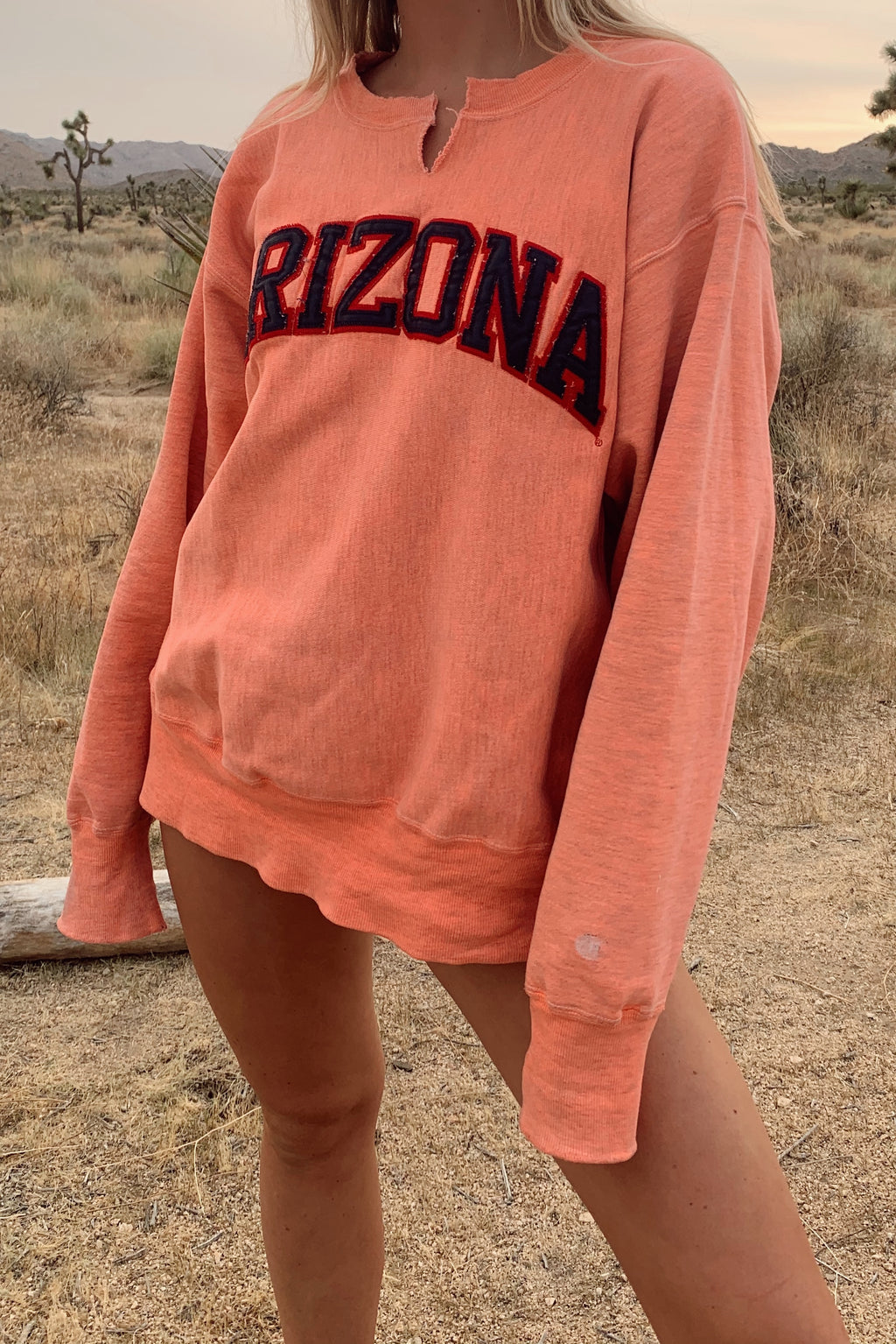 Hand Dyed Arizona Champion Crew Neck (S-L)