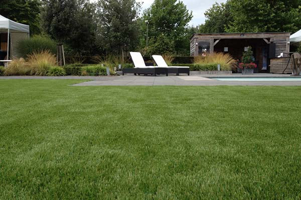 Artificial-Grass-Modern5