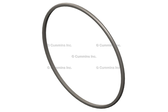 Cummins O Ring Seal - 3919853