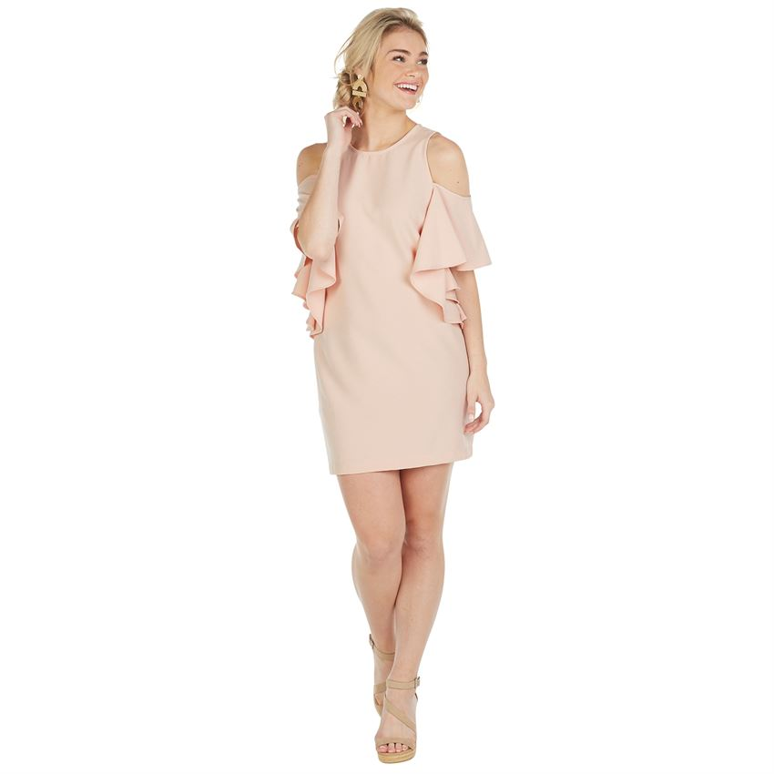 Birdie Dress, Blush