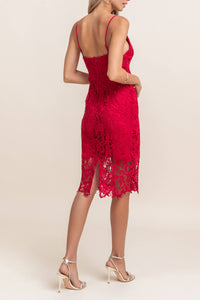 Scarlet Lace Dress