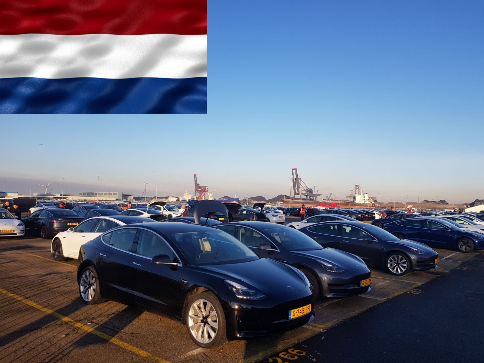 Today, happy owners pick up their Teslas in Netherlands