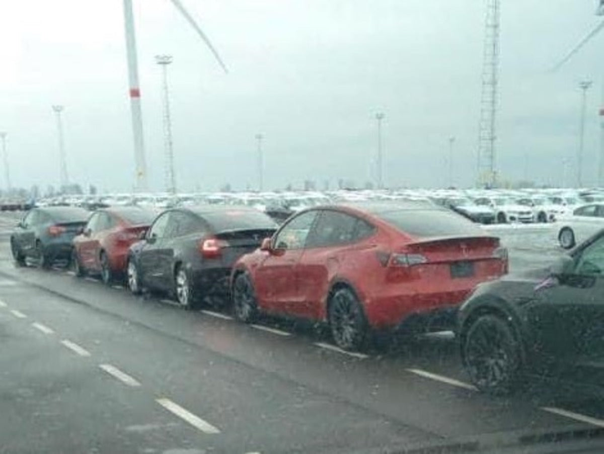 Tesla Model Ys Spotted at Port of Belgium in Europe as Giga Berlin Production Nears