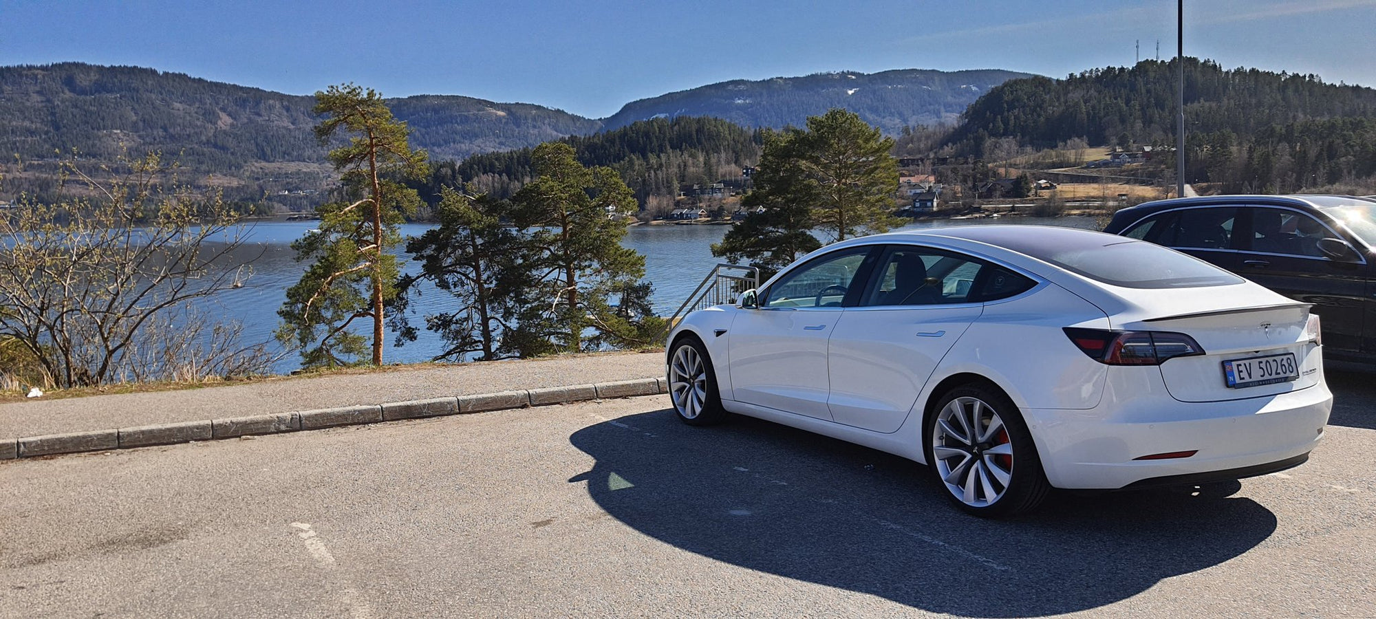 Tesla Has Highest Consumer Loyalty vs Other Car Brands in Norway