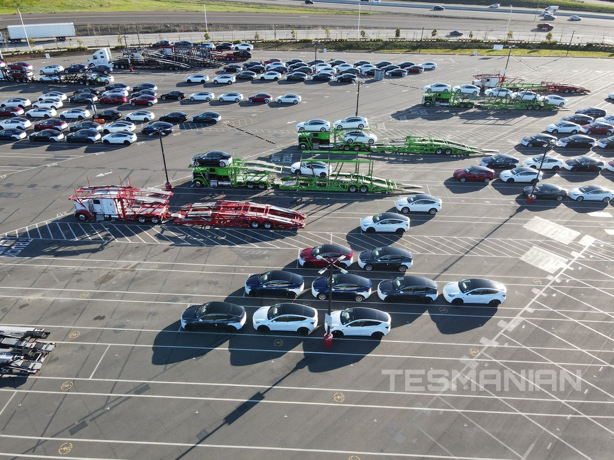 Photos: Tesla Fremont Factory Back to Full Speed for Quarter-End Push
