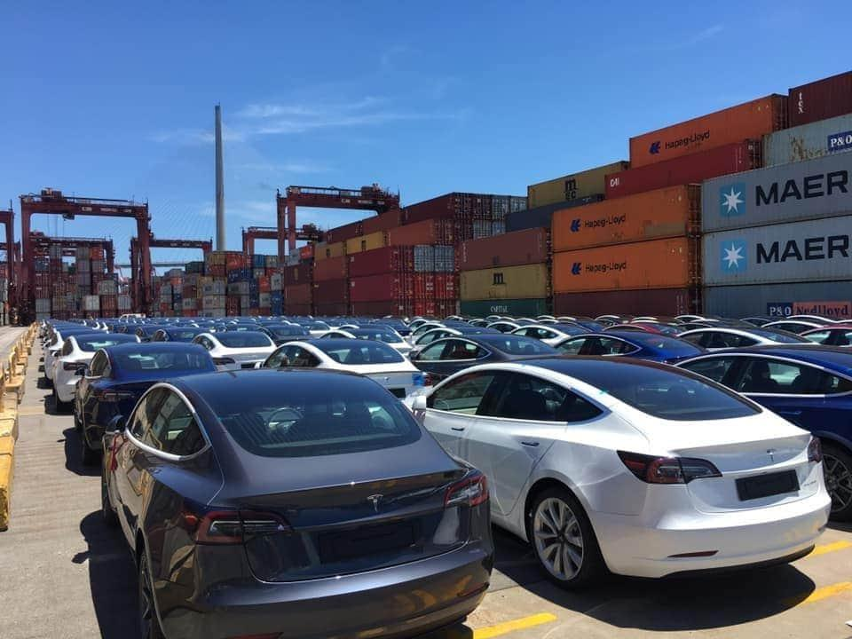 Hundreds of Tesla Model 3s Just Arrived in Hong Kong, Over 1K With The Coming Shipment