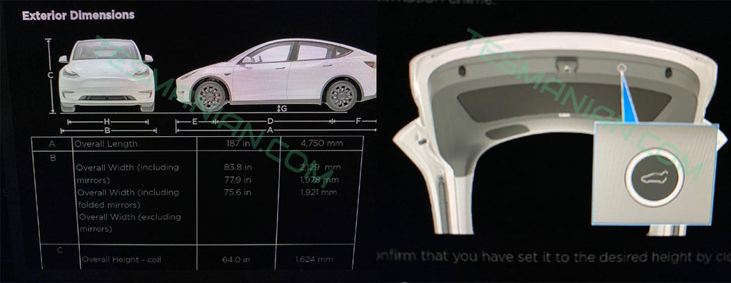Exclusive Tesla Model Y Dimensions, Weight and Performance Off-Road
