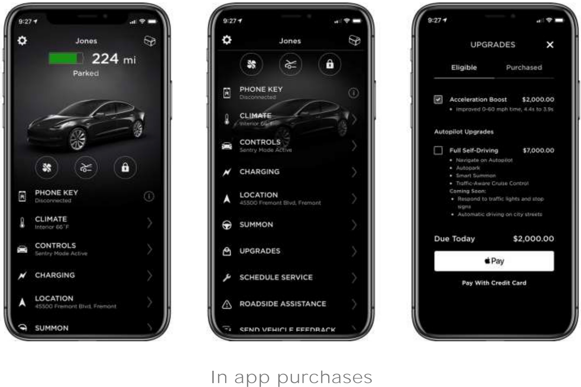 Tesla-Ecosystem-in-app-purchases