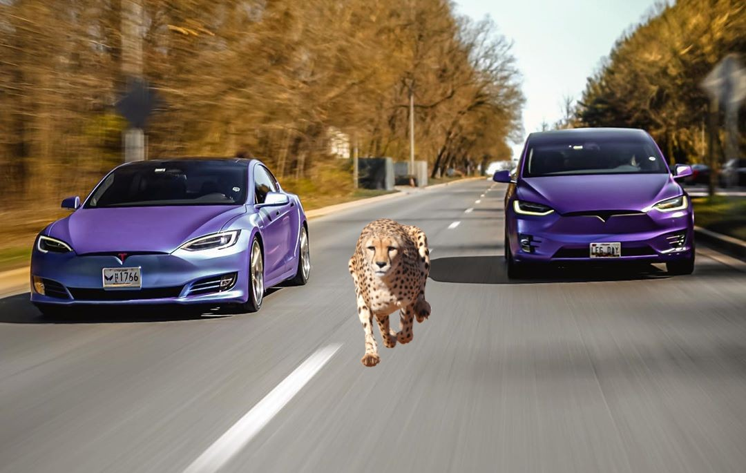 Tesla-Model-S-Cheeta-Launch-Mode