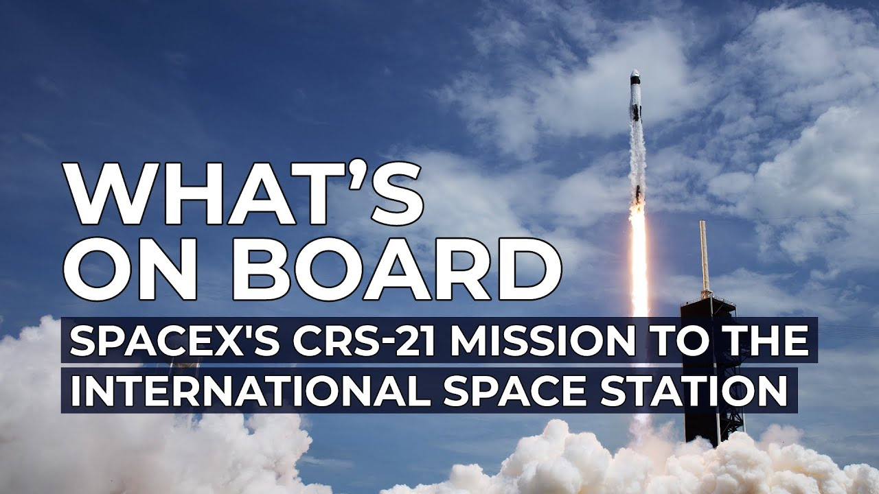 SpaceX will soon launch cargo to the Space Station -Find out what's on board Dragon!