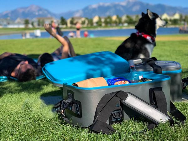 Tesla Model Y Soft Cooler for Picnic