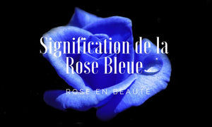 signification rose bleue