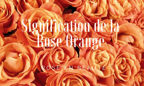 signification de la rose orange