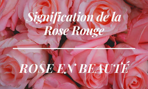 Signification de la Rose Rouge