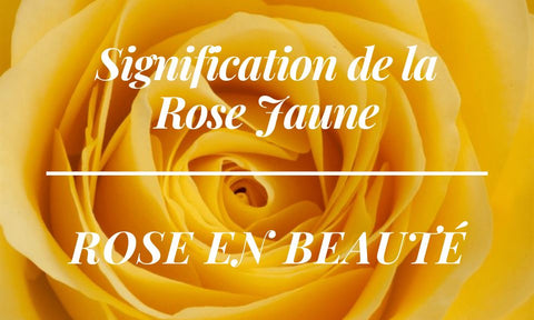 Signification rose jaune