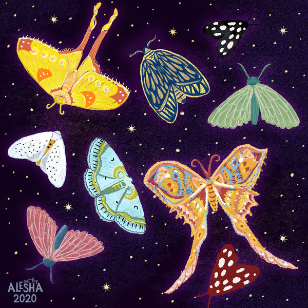 Image shows colorful illustrated moths against a starry night sky. Illustrated by Alesha  Sevy Kelley.