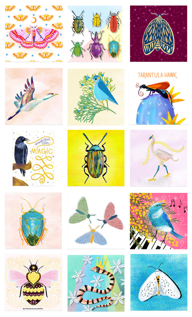Birds and bugs illustrations created by Alesha Sevy Kelley.