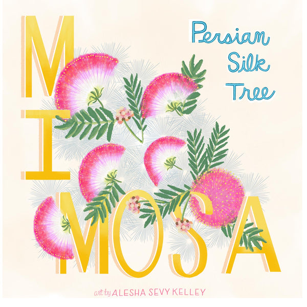 Image with illustration of the words MIMOSA and Persian Silk Flowers drawn with an illustration of Persian Silk Flowers.