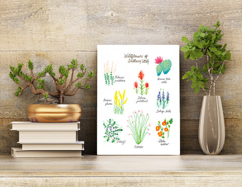 Desert Wildflower Wall Art print 8.5 X 11 unframed wall art.