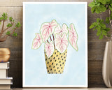 Wall Art Unframed 8.5 X 11 Print - House Plant Series Pink Caladium