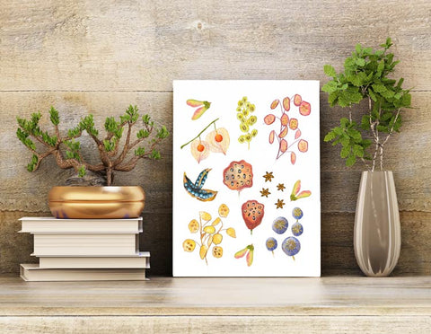 8.5 X 11 unframed wall art print with botanical seed pod illustrations.