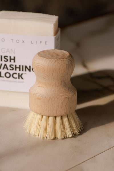 Earth & Daughter - Casa Agave™ Dishwashing and Vegetable Hand Brush