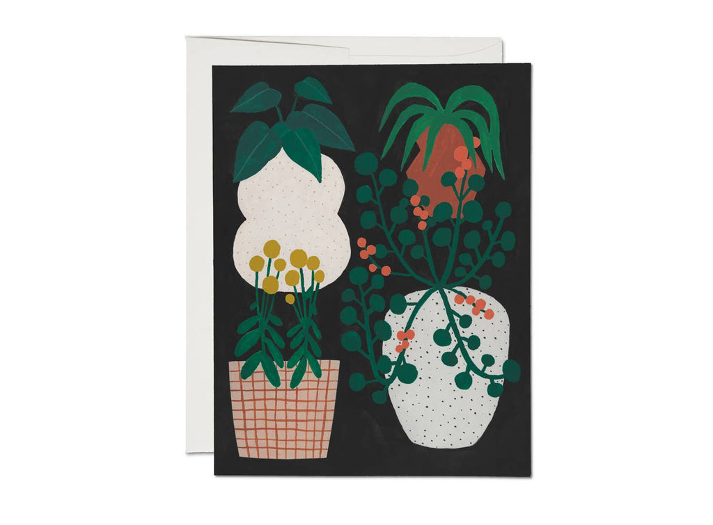 Red Cap Cards - Indoor Plants