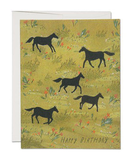Red Cap Cards - Black Stallion