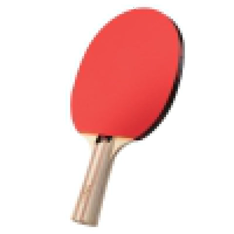 Image of Viper Two Star Table Tennis Racket One Inlay Table Tennis Accessories Viper