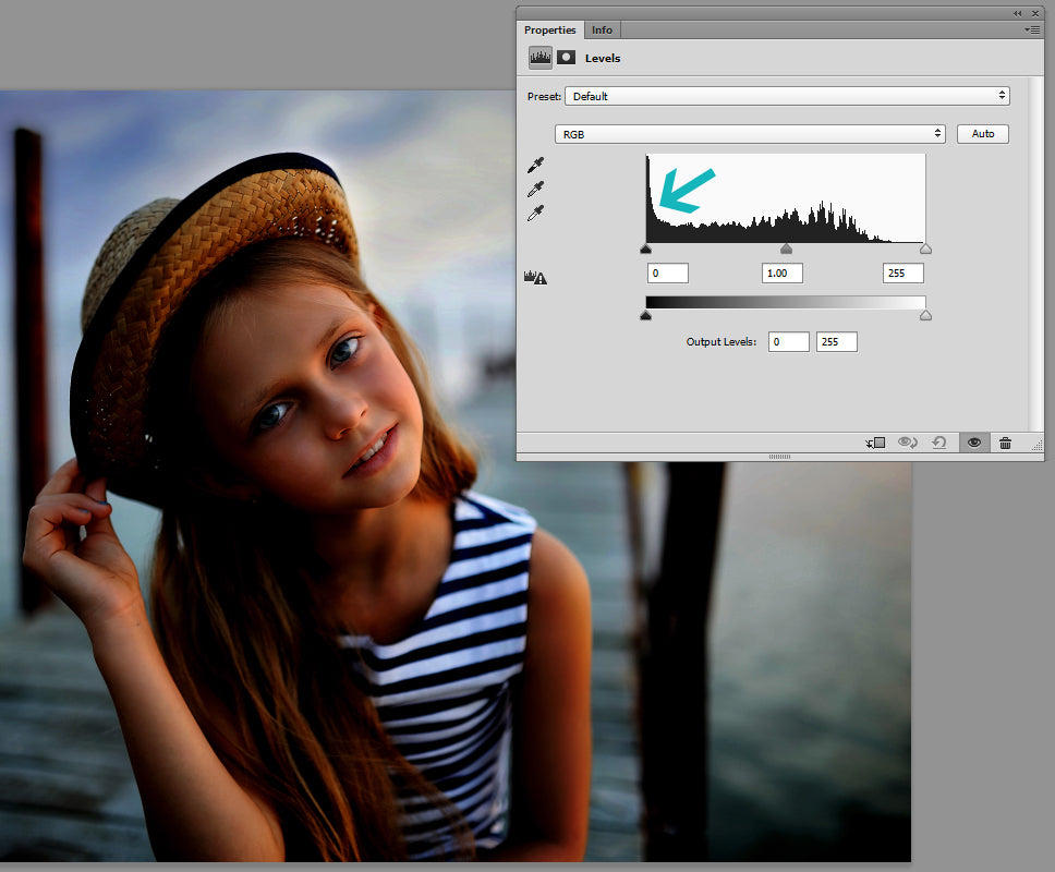 how to read a histogram photoshop