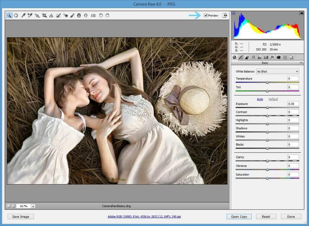 Photoshop Raw