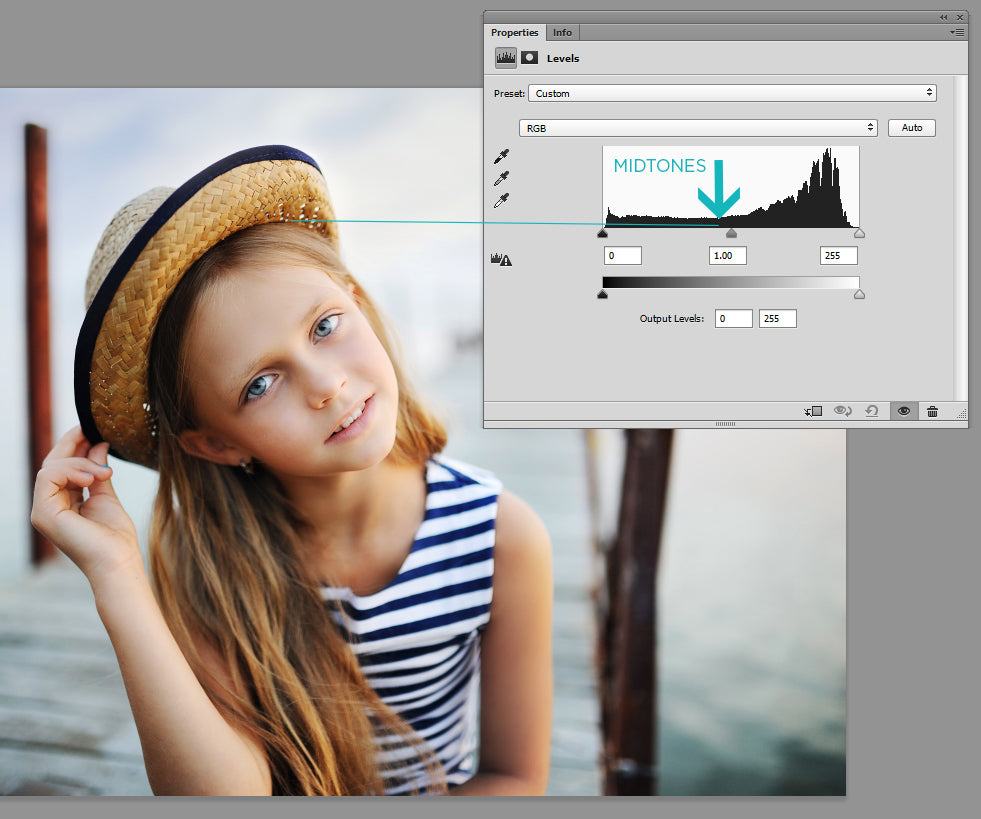 Reading the Histogram in Photoshop - Pretty Actions