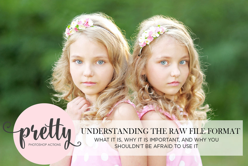 Understanding the RAW File Format