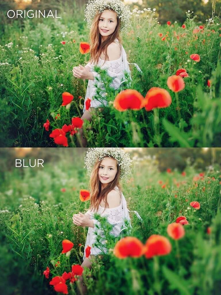 Photoshop Lens Blur Before and After Image