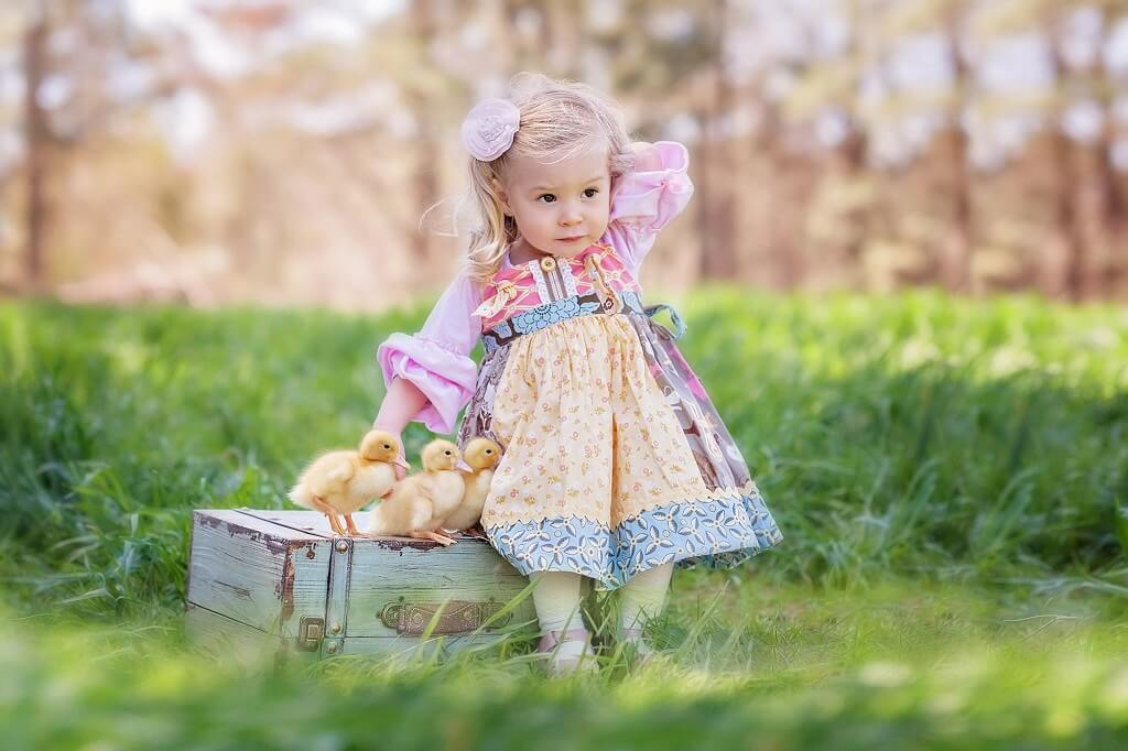 Baby Chicks Easter Photos