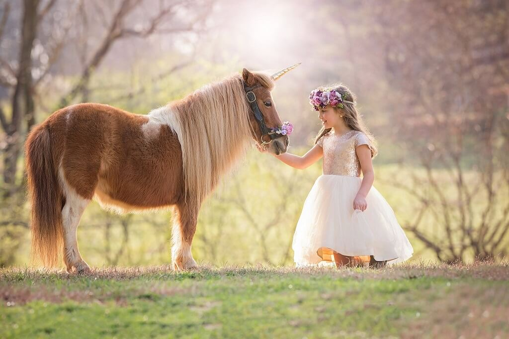 Beautiful Unicorn Pictures