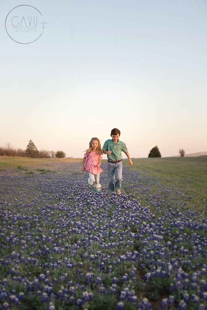 bluebonnet pictures in texas