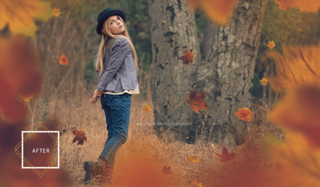 Fall Leaf Overlays