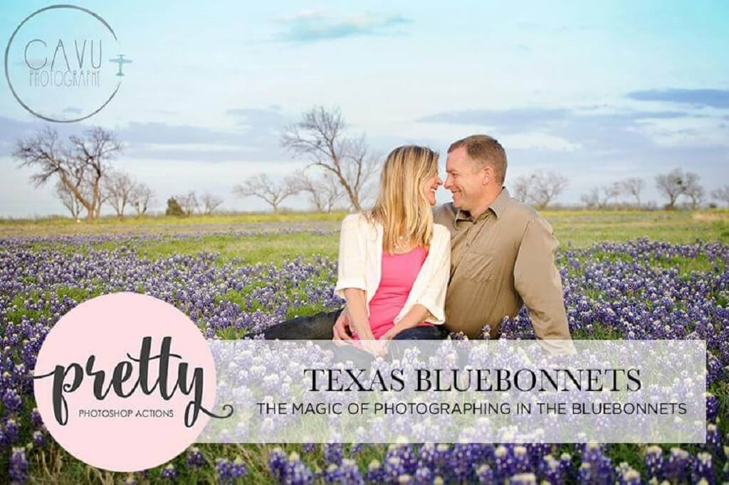 Texas Bluebonnet Photography
