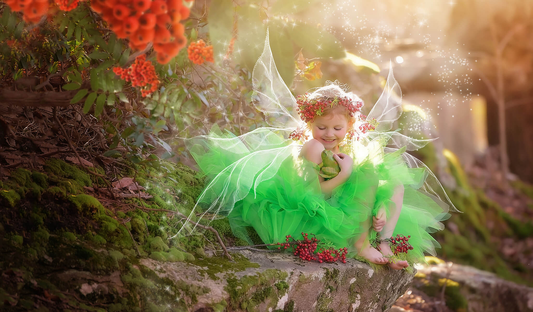 FAIRYLAND Overlays and Actions Collection