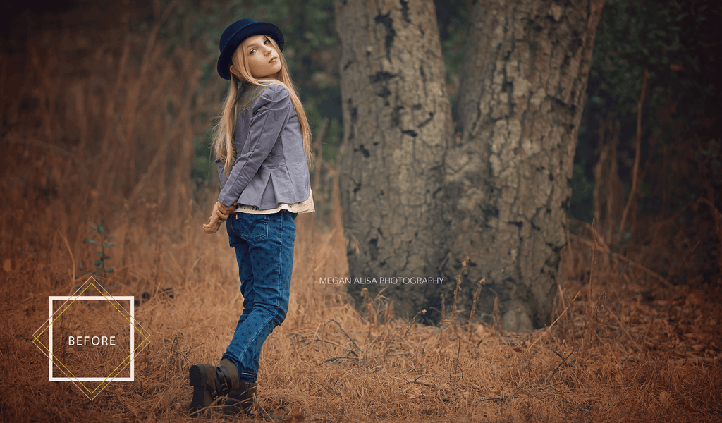 Fall Photoshop Overlays and Actions - Pretty Actions