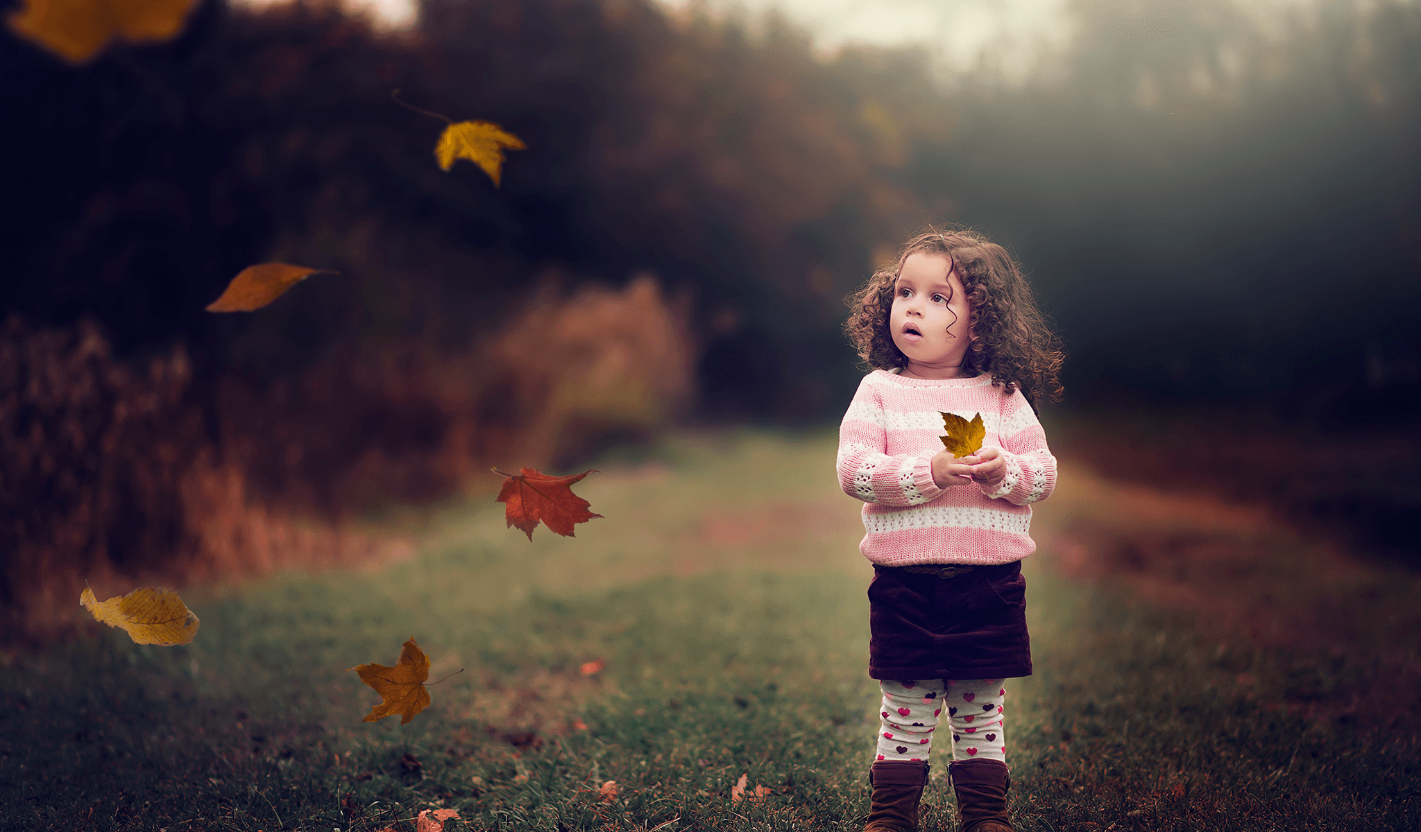 Falling Leaves Overlays & Actions Collection