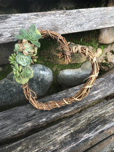 "6"" succulent heart wreath"