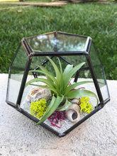 Load image into Gallery viewer, Glass Geometric hexagon Terrarium with Air Plants, DIY