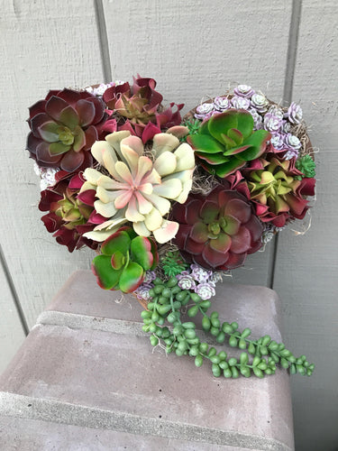 Artificial Succulent Heart Shadow box